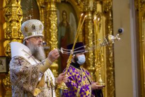 Глава Донской митрополии совершил Божественную литургию в Ростовском кафедральном соборе Рождества Пресвятой Богородицы